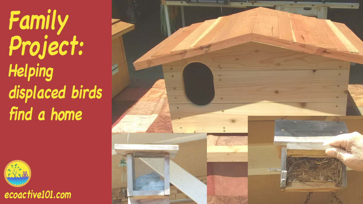 "A large barn owl box, a small bird feeder and a small screened box filled with dryer lint that birds can peck out to use in building their nests. The words say, ""Family Project, Helping displaced birds find a home."""
