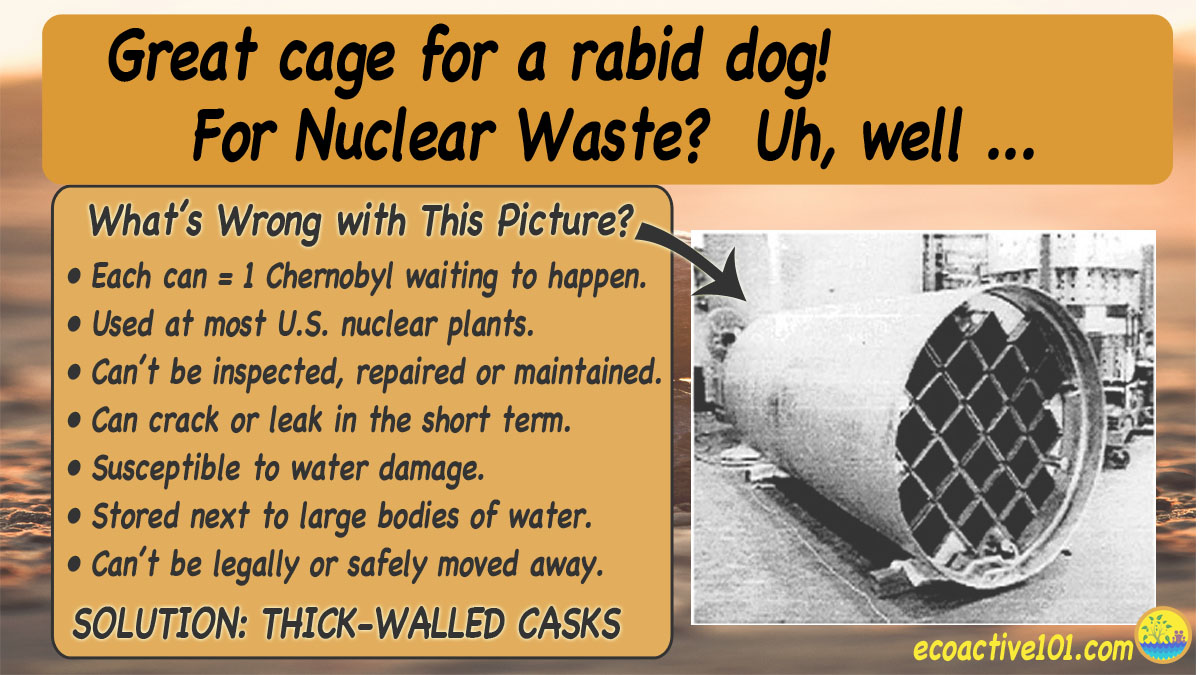 "The image title reads, ""Great cage for a rabid dog! For nuclear waste? Not so good."" On the right is the image of a thin-walled nuclear waste canister with a grid over the opening. To the left, under the question ""What's wrong with this picture?"" are seven bullet points, as follows: ""#1, Each can equals one Chernobyl, waiting to happen. #2, Used at most US nuclear plants. #3, Cannot be inspected or repaired. #4, Can crack or leak in the short term. #5, Susceptible to water damage. #6, Stored next to large bodies of water. #7, Cannot be legally or safely moved away."" Across the bottom are the words, ""Solution: Replace with thick-walled casks."""